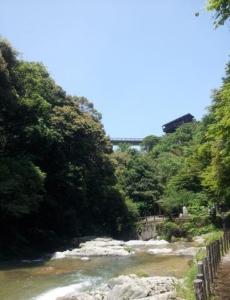 佐賀県唐津市,観音の滝,おすすめパワースポット,人気,有名,恋愛運,健康運,彼氏が欲しい,出会い,占い