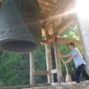 【実相院(實相院)】九州の寺社仏閣巡り!しだれ桜が有名な伊万里市おすすめのパワー