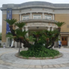 【徴古館】インスタ映えするレトロな建物!佐賀県佐賀市のおすすめ観光スポット!